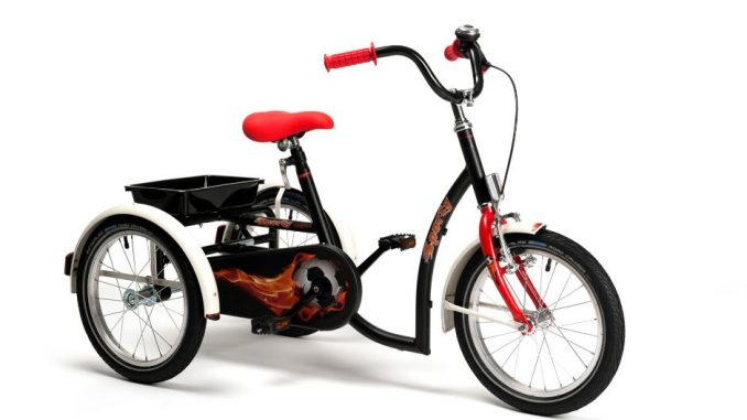 rower-trojkolowy-rehabilitacyjny